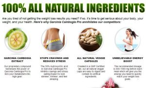 Garcinia Cambogia Featured Image